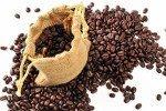Economia, l'1,2 per cento della produzione mondiale di caffè viene realizzata