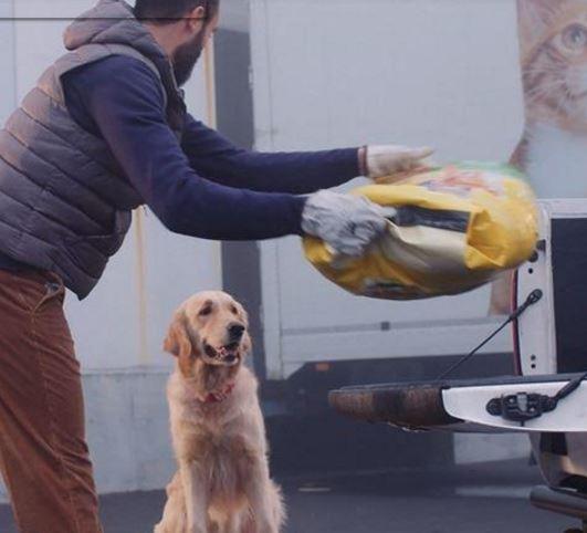 Un milione di pasti per i cani e i gatti dei rifugi Enpa di tutta Italia, aiuti anche ai centri di Trieste, Udine e Cervignano