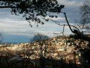 Il Comune annuncia la riapertura dell'Orto Botanico per il prossimo 8 marzo