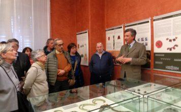 iapodes visita guidata alla mostra 17 febbraio 2019