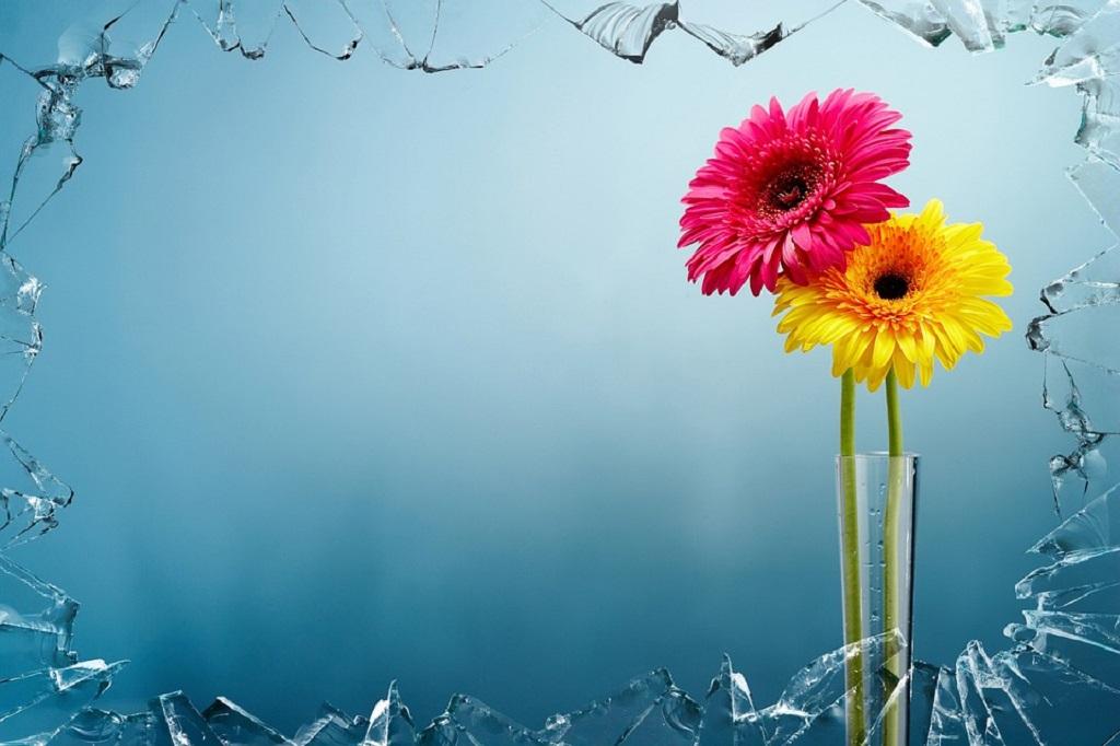 Trieste, lancia dal balcone dei vasi di fiori: denunciata ...