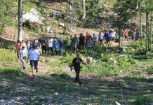 Forest Summer School: Ampezzo 8-14 agosto 2020
